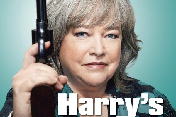 Serie TV Harry's Law immagine di copertina