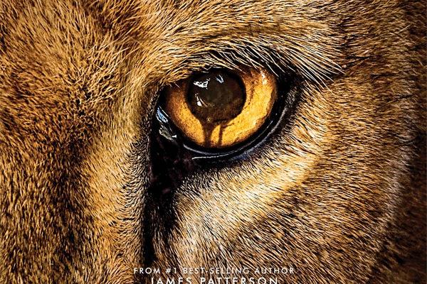 Serie TV Zoo immagine di copertina
