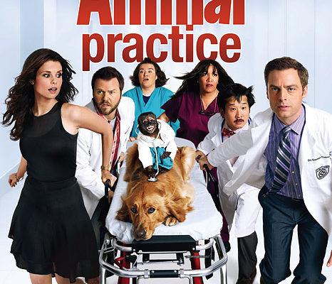 Serie TV Animal Practice immagine di copertina